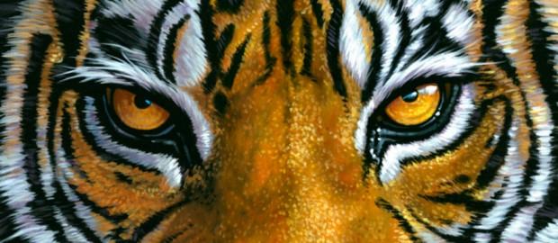 Basta piangersi addosso, la destra ritrovi gli occhi della tigre